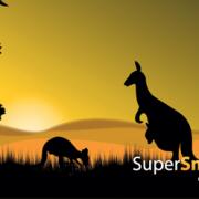 SuperSmartTag_kangaroo